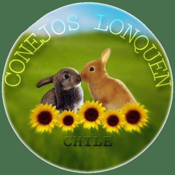 Conejos Lonquen   Criadero de conejos   Carne de conejo   Santiago de Chile